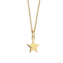 Newbridge Silverware Pendant with Star