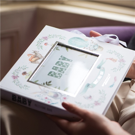 Baby Milestone Book  - Click to view a larger image